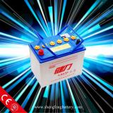 Car Battery(12v)