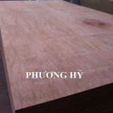 Sell_ Contruction plywood grade AB glue MR