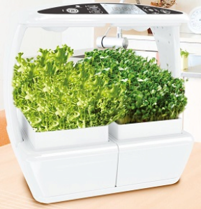 Biofarm basic indoor gardening appliane from jisung for Indoor gardening machine