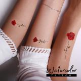 Passet Water Color Tattoo Sticker WT31_WT42