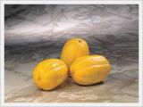 Korean Fresh Golden Melon