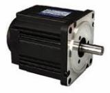 Blushless DC Electric Motor (TM90-03 Series)