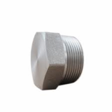 stainless ASTM A182 F304ln hex head plug