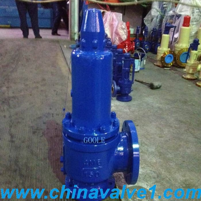 Balanced bellow safety valve from china yongjia goole