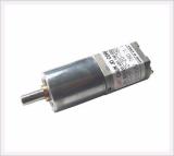 Φ20 - P Geared Motor