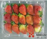 Fresh Strawberries 750g KOREA - MISO-N