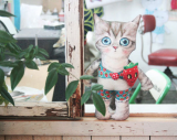 A cat doll No.5