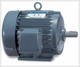 Explosion Proof Motors (Increased Safety E Type)