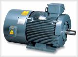 Vector Inverter Motors