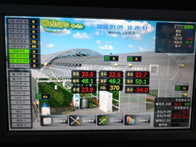 Korean greenhouse_ multispan greenhouse_ automated greenhous