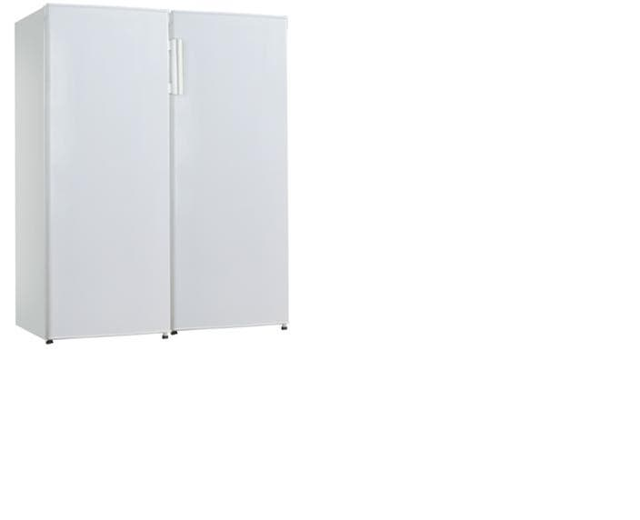 Frost Free Upright Fridge