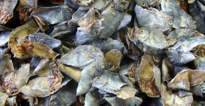 Dried fish from philippines for sale for Dried fish philippines