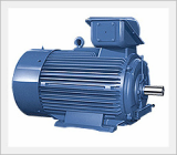 Totally Enclosed Fan Cooled Induction Motors