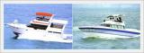3100 & 5300 SONATA Yacht