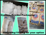 100_ natural gypsum powder with free sample test