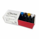 COVID_19 RT_PCR PNA KIT