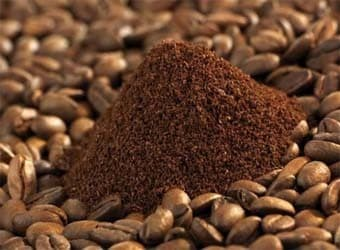 Vietnam High Quality Robusta Coffee Grade 1  Best Price