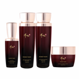 WHOO YEON GINSENG SKIN CARE 4 set