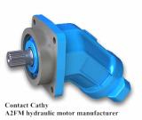 hydraulic motor A2FM80 A2FM90 A2FM107 A2FM125
