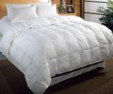 233 white down comforte