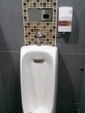 Urinal washing apparatus