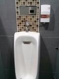 Urinal washing apparatus