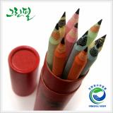 Zebra Pencil