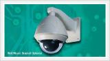 Vandal Proof Outdoor PTZ Type IP Camera