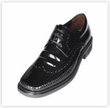 Men's Genuine Leather Dress Shoes / MEX220