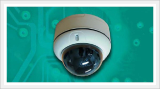 Vandal Proof Outdoor Dome Type IP Camera