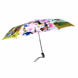 Korea Folk painting umbrella -No- 1444488-