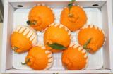Fresh Fruit - Hallabong