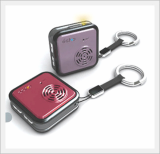 Key Holder(Voice Recorder Type)(echo)