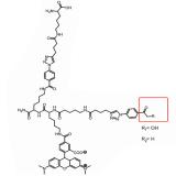 Montan Wax,Montan Wax Acids,Butanediol,Ethylene Glycol