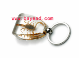insect-keychains.jpg