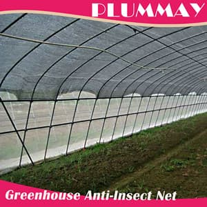 agricultural mesh net greenhouse plastic anti insect net