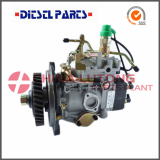 Ve Injection Pump for Diesel Engine Jx493q1 Gw4d28
