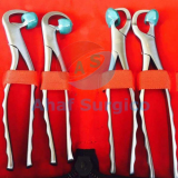 Physics Forceps Set Dental