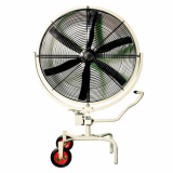 Large-sized Fan