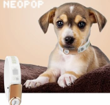 _Neopop_ Led _ Buckle Pet Smart Band Only For Dogs _LED color _ Blue_