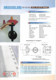 Grooved End Butterfly Valve 8