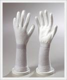 Glove (DCPWL-300)