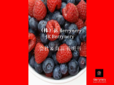_Yonsei Univ_Berrynery Juice_Blueberry_Blackberry_Cranberry_