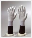 Glove (CAESD-502)