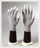 Glove (CAESD-204)