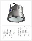 Plasma Lighting System (PLS)-Indoor Light