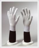 Glove (CAESD-504)
