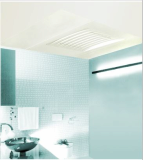 bathroom ceiling  Vitt