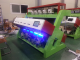 CCD type Grain color sorter