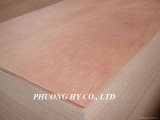 PLYWOOD FOR CONSTRUCTING